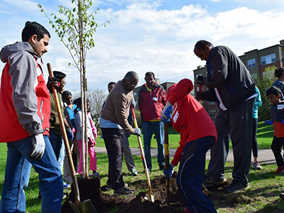 community-tree-planting-may-2018