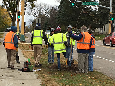Minnetonka Blvd Tree Planting