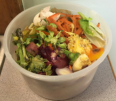 organics recycling example plastic container with food in it